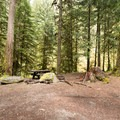 Sites are nestled in a Douglas fir forest and feature picnic tables.- Hobo Camp