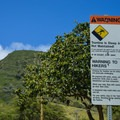Bring a reusable water bottle. So many plastic bottles litter the top.- Koko Head Stairs + Koko Tramway