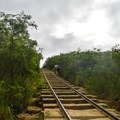 The trail follows an old tramway up the side of the crater.- Koko Head Stairs + Koko Tramway