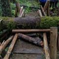 Some bridges are still passable despite winter storm damage.- Little North Santiam River Trail