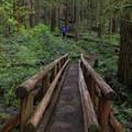 One of many footbridges crossing a creek.- Little North Santiam River Trail