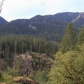 A view of the adjacent Henline Mountain from the high point of the trail.- Little North Santiam River Trail