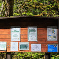An information plaque at the Shady Cove Campground Trailhead.- Little North Santiam River Trail