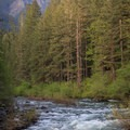 Henline Mountain above the Little North Santiam River.- Little North Santiam River Trail