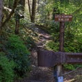 The Shady Cove Campground Trailhead.- Little North Santiam River Trail