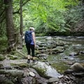 Explore the creek or float down the creek, Deep Creek is filled with water and tranquility either way.- Deep Creek Loop