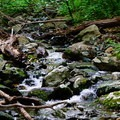 A small stream along Little Devils Stairs.- Little Devils Stairs