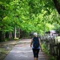 The Oconaluftee River Trail is smooth and wide enough for strollers, something that isn't found very often in the Smoky Mountains.- Oconaluftee River Trail + Mountain Farm Museum