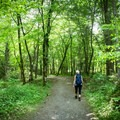 The Oconaluftee River Trail is also smooth and wide enough to accommodate strollers, unlike most trails in the Smokies.- Oconaluftee River Trail + Mountain Farm Museum