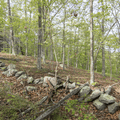 A rock wall reminiscent of former farm lands.- Chatfield Trail