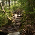 The trail can be quite rocky at times.- Lonesome Lake via Basin Cascade + Cascade Brook Trails