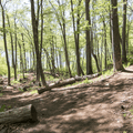 Hiking trails on the surrounding grounds.- Gillette Castle State Park