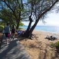 Ka'anapali Beachwalk just south of Kahekaili Beach Park under the shade of alboraba/kiawe (Prosopis pallida) trees.- Ka'anapali Beachwalk