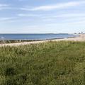 Grass fields along the beach.- Sherwood Island State Park