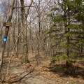 Hikers must register to visit the Snow Hole.- Snow Hole + Taconic Crest Trail
