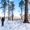 Even when snowy in May, the trail is gorgeous and easy to follow.- Point Imperial Trail