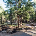 Every campsite is beautiful and spacious!- Ten-X Campground