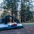 Plenty of flat spots to set up camp!- Ten-X Campground