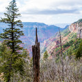 The first glimpse of the trail to come.- North Kaibab Trail to Roaring Springs