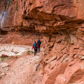 The trail carves right into the cliff.- North Kaibab Trail to Roaring Springs