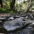 Nojoqui Creek flows beside the trail.- Nojoqui Falls
