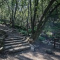 Stone steps along the hike.- Nojoqui Falls