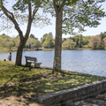 A shaded picnic area.- Cedar Lake Beach