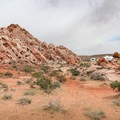 Dispersed camping near the Aztec sandstone rock formations at Whitney Pockets.- Gold Butte National Monument