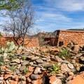 The visitor center desert garden.- Red Rock State Park