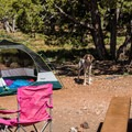 Spring weather is usually pleasant and dry.- Desert View Campground
