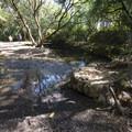 Trail crossing over Ho'olawa Stream.- Twin Falls Hike + Wailele Farm