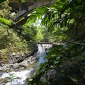 View of the Wailua Nui Stream below Upper Waikani Falls.- Upper Waikani Falls / Three Bears Falls