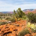 Eagle's Nest Overlook.- Red Rock Loop Hike