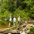 One of the first stream crossings.- West Fork Trail Hike