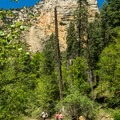 West Fork Canyon.- West Fork Trail Hike