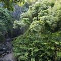 View of Wailua Falls (dry) from HI-360.- Wailua Falls
