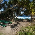 One of five walk-in campsites at Kīpahulu Campground.- Kīpahulu Campground