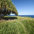 One of five walk-in campsites along the Kahakai Trail, and a part of Kīpahulu Campground.- Kūloa Point + Kahakai Trail