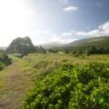 View back up the slopes of Haleakalā.- Kūloa Point + Kahakai Trail