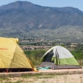 Tent camping at Dead Horse Ranch.- Dead Horse Ranch Campground