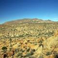 A view from Mastodon Peak.- Lost Palms Oasis + Mastodon Peak Trail