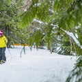 Snowshoeing to Brandywine Falls.- Brandywine Falls Snowshoe