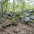 The trail has some small rock scrambles.- Mount Taurus / Bull Hill