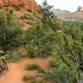 Watch for mountain bikes!- Pyramid Mountain Loop