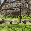 The park amphitheater is located on Quail Loop.- Dead Horse Ranch Campground