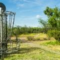 The disc golf course runs along the Verde River.- Dead Horse Ranch State Park