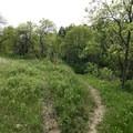 Take the trail left.- Devils Pass via the Maah Daah Hey Trail