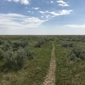 The trail following along a plateau.- Petrified Forest Loop Trail