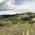 The trail winding through the badlands.- Petrified Forest Loop Trail
