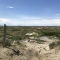 The view from the trail looking toward the parking lot.- Petrified Forest Loop Trail